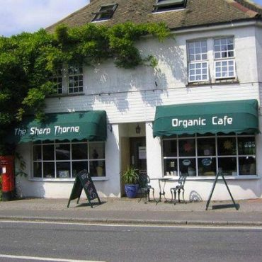 Sharp Thorne Organic Cafe – VF & GF