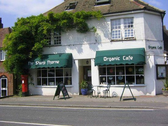 Sharp Thorne Organic Cafe - VF & GF